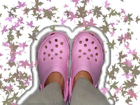 wpid-Crocs-2006-10-19-19-031.jpg