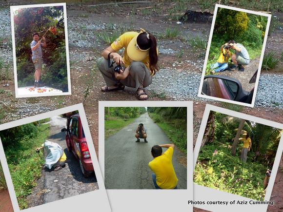 wpid-CareyIsland2-2011-08-16-17-12.jpg