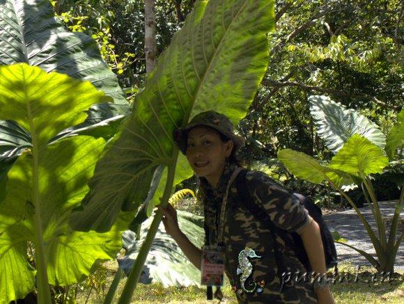 wpid-S150369-2011-10-30-15-43.jpg