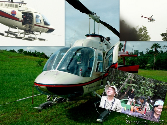 wpid-Attenborough-8-2011-12-1-00-24.jpg